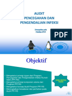 Audit PPI.ppt