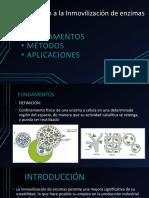Introducción a la Inmovilización de enzimas.pptx