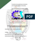 reporte Nº10 ANALISIS INSTRUMENTAL.docx