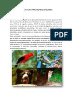 Flora y Fauna Amenazadas en El Peru