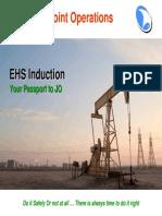 EHS Induction 2009E