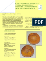 A Guide to the Common Postharvest Diseases and Disorders of Navel Oranges and Mandarins Grown in Inland Australia