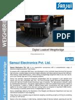 Digital and Electronics Weighbridge / Truck scales- Sansui Electronics