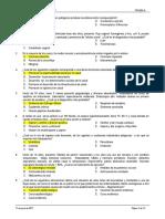 PRUEBA A - CLAVE ARM2017.pdf
