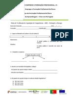 Ficha de Verificacao de Aquisicao de Competencias ufcd 6651
