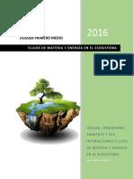 Flujos_de_materia_y_energia_en_el_ecosis.docx