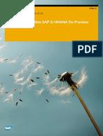 Custom Code within SAP S4HANA OnPremise.pdf
