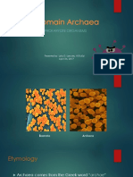 Domain Archaea (Shortened)