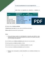 Gramatica & Ejercicios - Preterito Pluscuamperfecto de Subjuntivo