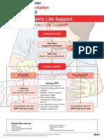 Advanced Paediatric Life Support_A0.pdf