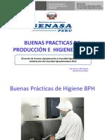 BUENAS PRACTICAS DE HIGIENE.ppt