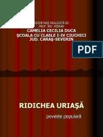 0_ridichea_uriasa