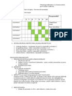 Documentatie TIC.doc