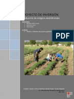 Proyecto_oregano_deshidratado - SANTILLAN, CARMONA, SCHIEDA Y VICENTE.pdf