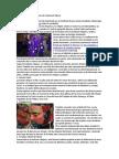 20 Tradiciones y Costumbres de Guatemala Típicas