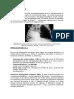 3. Malformaciones Pulmonares-b y c