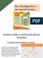 Anatomia y fisiologia sexual humana