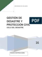 CICLO DEL DESASTRE.docx