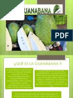 guanabana-ppt