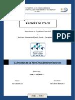 cnss.pdf