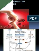 errores-innatos-del-metabolismo.pdf