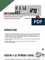 Derecho a La Intimidad Power Po1nt (1)