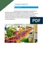 agricola cerro prieto.docx