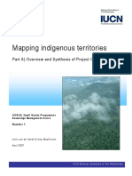 Van de Sandt & Amy MacKinven-mapping indigenous territories.pdf