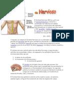 El Sistema Nervioso_0.pdf