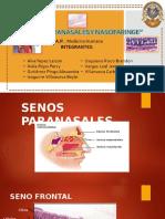 Exposición de Senos Paranasales y Nasofaringe 1