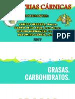 GRASAS Y CARBOHIDRATOS DE LAS CARNES.pptx