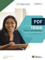 E053-2017-01_UNSAAC_Bases_-_Tesis_Título_Profesional_-_VFinal