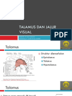 260374986-Talamus-Dan-Jaras-Visual.pdf
