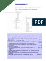 Guía 8VO pusle.doc