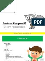Anatomi komparatif digestive.pptx