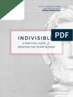 IndivisibleGuide_2017-02-26_v9.pdf