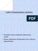 CARA PEMAKANAN HAIWAN.pptx