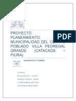 DIAGNISTICO-FINAL-PEDREGAL-GRANDE.docx