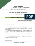 bovino_corte_2009_10.pdf