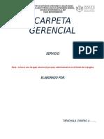 CARPETA GERENCIAL+2017.doc