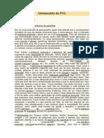 Metamodelo Da PNL