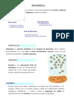 Estatística.doc