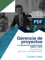 Gerencia de Proyectos - Brochure