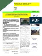 EL  BOLETIN  edición   N°  26   AÑO  2010   ------------