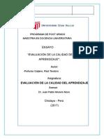 ENSAYO REVISADO .docx