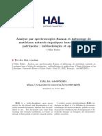 Analyse par spectroscopies Raman et infrarouge