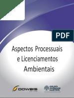8- Aspectos Processuais Ambientais e Licenciamentos Ambientais