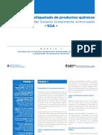 SGA MODULO 1.pdf