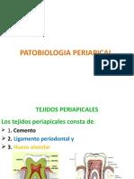 PATOBIOLOGIA PERIAPICAL