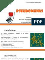 pseudomonas.pptx